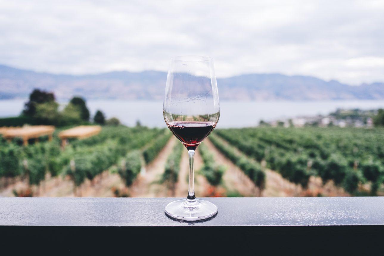30 -55 Half Day Swan Valley Wine Tour – Sunday