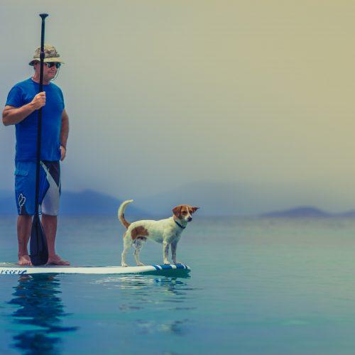 Dogfishing